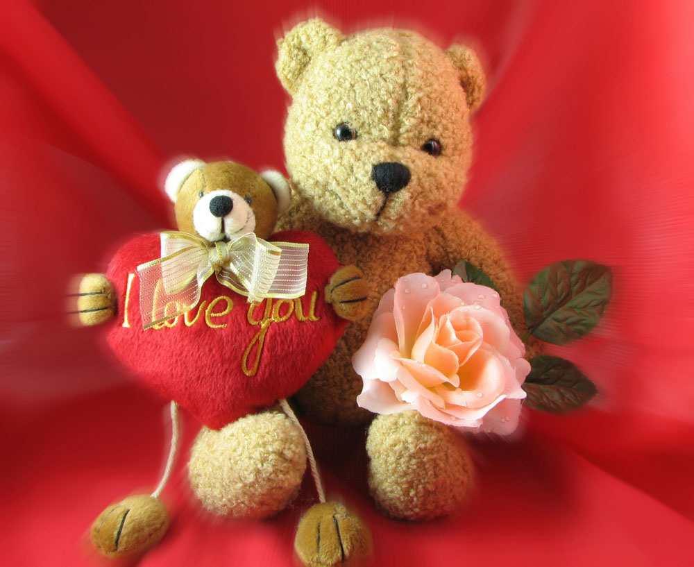 happy teddy Dday images HD